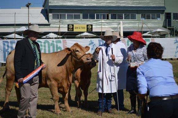 Grand Champion Female, Beef Australia 2015, Colinta Harmony