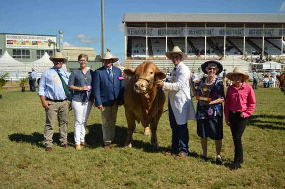Beef Australia 2018 - Senior Champion Male Huntington Maverick, Huntington Charbrays.