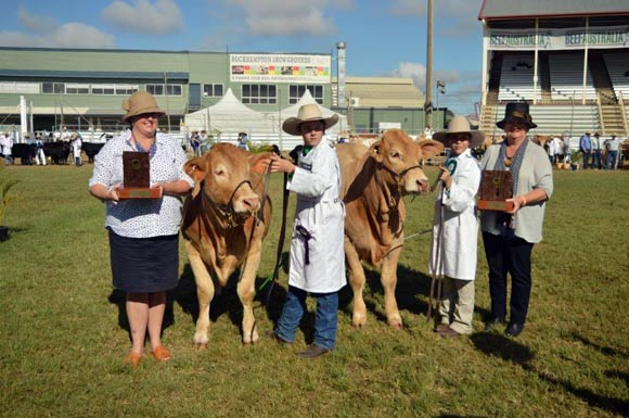 Beef Australia 2018 - Champion Calf Female Greenpark Lacey,Greenpark Charbrays &  Reserve Calf Champion Female Diamond Dove Catalena, Diamond Dove Charbrays.