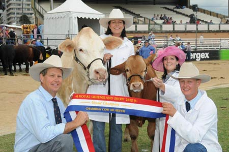 Newcombe Family with their 2010 Grand Champion Female Newcombes Bindi