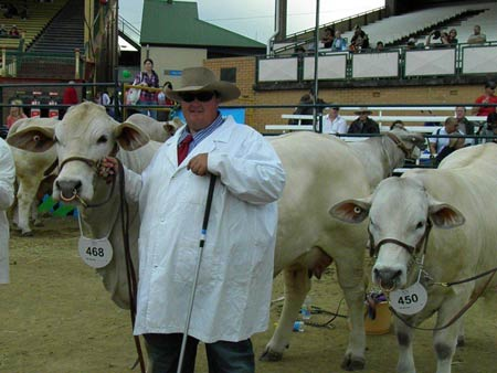 Travis Luscombe with Berwick Charbrays Grand Champion Cow & Calf - Brisbane Royal Show 2011
