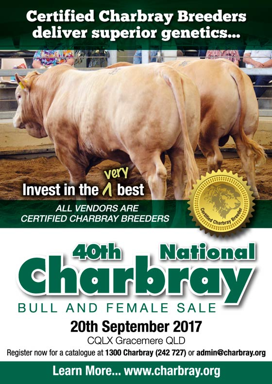 40th National Charbray Bull & Female Sale
