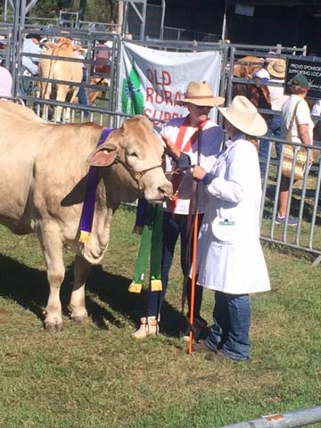 Senior Champion Female Kandanga - Valley Jonty