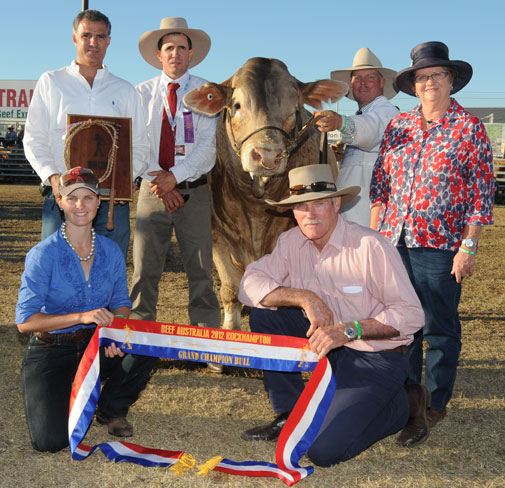 Beef Australia 2012 Grand Champion Bull Diamond Dove Elton