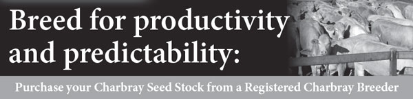 Breed Productivity and Predictability