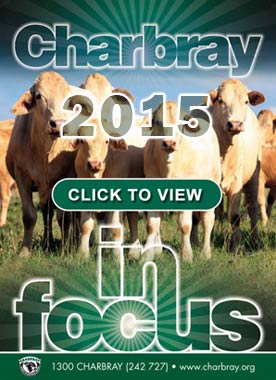 2015 Charbray In Focus Magazine - Click to View Online
